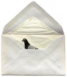 抽屉里的青春 (Lá thư chưa kịp gửi)